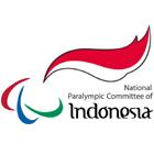 logo NPCI